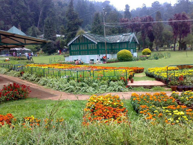 ooty-hill-station-Botanical-gardens
